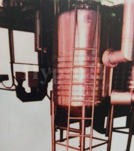 Yeast System