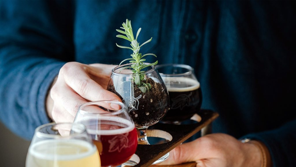 sustainable brewing